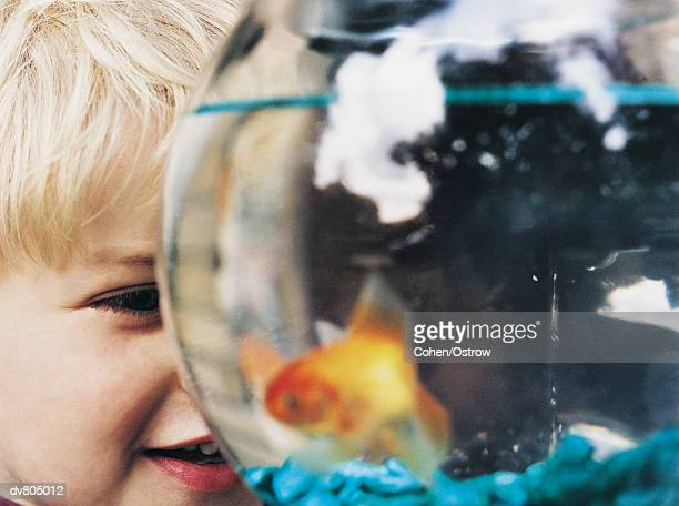 Young Boy Looking at Goldfish in Bowl