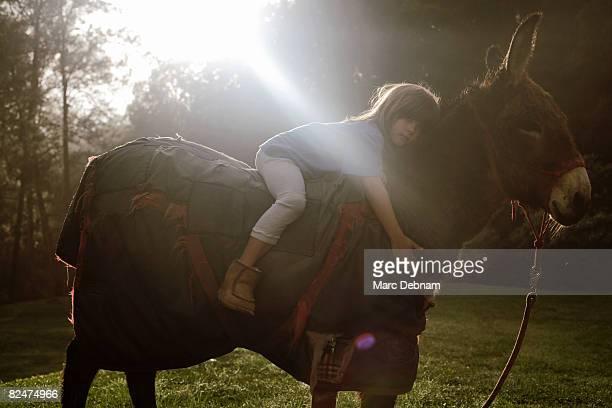 Young boy lying on a donkey's back
