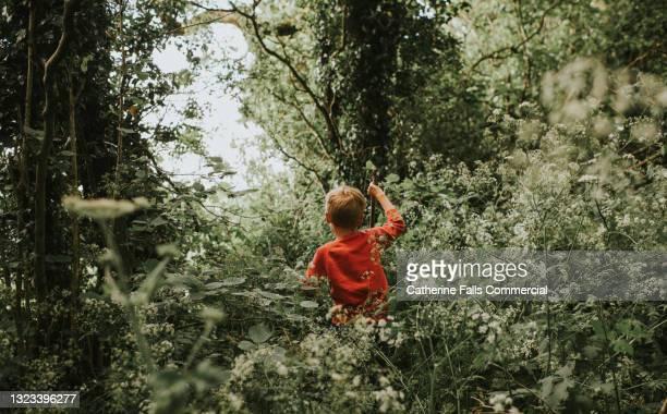 young boy makes his way through an overgrown forest - omgeven stockfoto's en -beelden