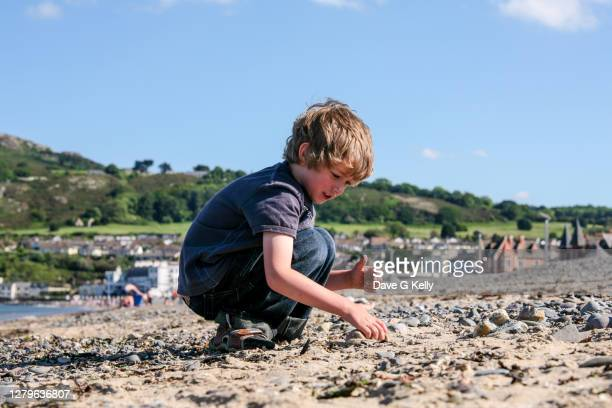 young boy picking stones on a beach - northern european descent stock pictures, royalty-free photos & images