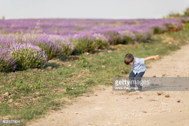 Young boy playing stamping soil next to lavender field