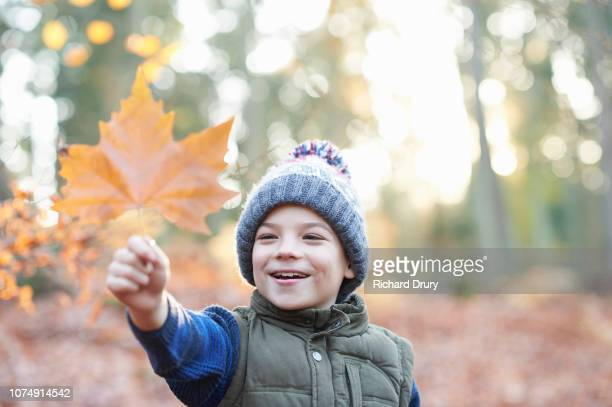 Young boy playing with a leaf in Autumnal woodland