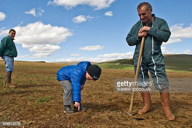 A young boy points out a molehill made by water vole a small rodent in a field in Allanche on April 27 2016 / AFP / Thierry Zoccolan