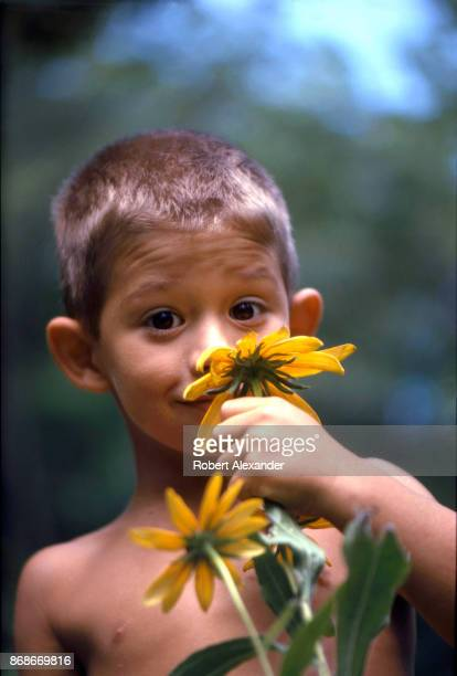 A young boy poses with a sunflower beside his home in Bristol Tennessee in 1967