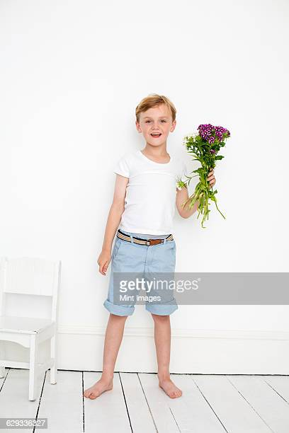 young boy posing for a picture in a photographers studio, holding a bunch of flowers. - shorts stock pictures, royalty-free photos & images
