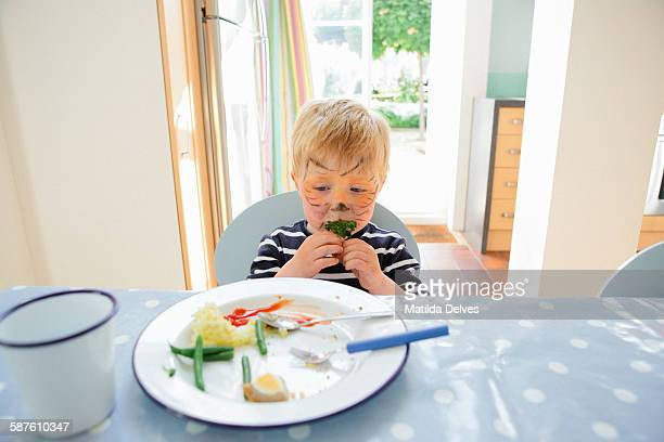 Young boy pre school age, eating a healthy meal