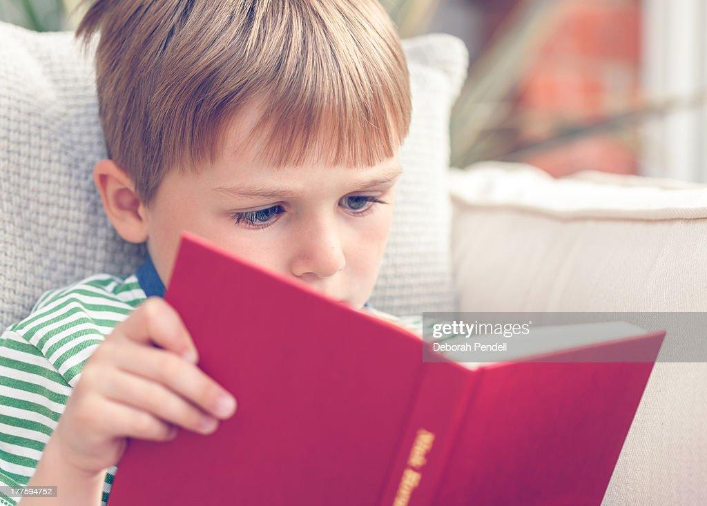 Young boy reading a book : Stock Photo