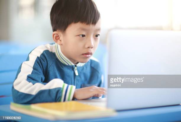 young boy reading at his desk in a classroom - one boy only stock pictures, royalty-free photos & images