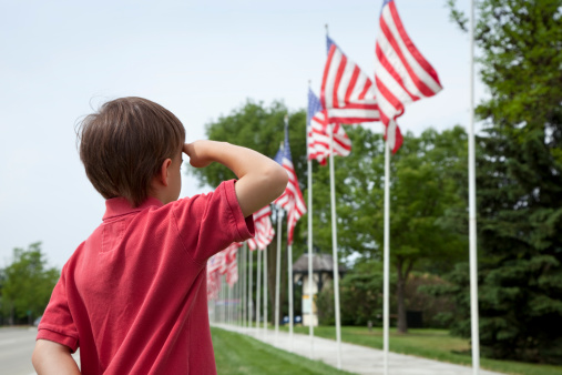 Young boy salutes flags of Memorial Day display 176820189