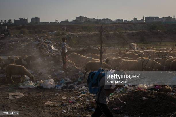 A young boy shields himself from dust as he herds his families sheep in the Nusseirat district on July 19 2017 in Gaza City Gaza For the past ten...