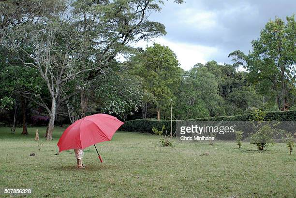 Young boy standing alone in a garden under his red umbrella.