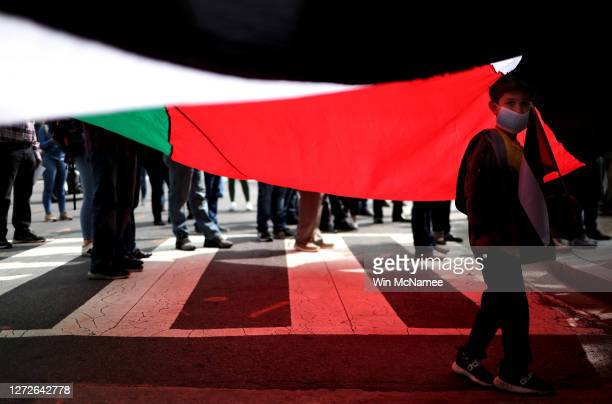 Young boy stands beneath a Palestinian flag as protesters from multiple Palestinian rights organizations demonstrate outside the White House on...