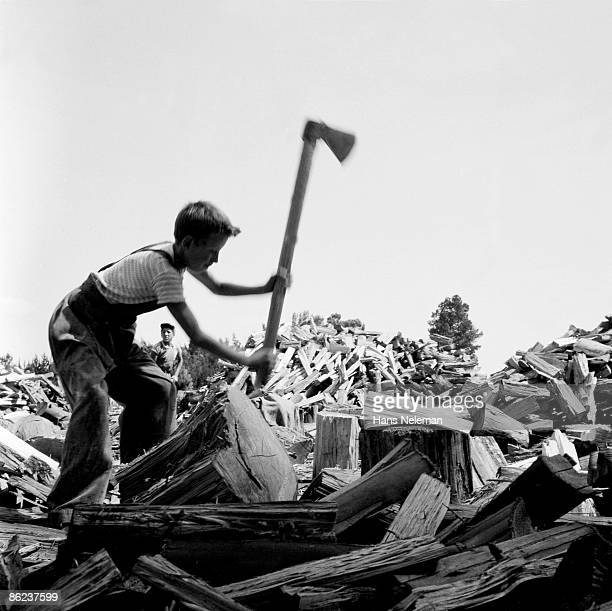 Young boy swings a hatchet to chop wood, amid a huge pile of logs, November 1960.