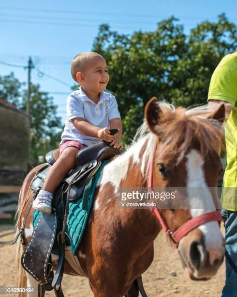 ung pojke tar en ridtur på en ponny - pony play bildbanksfoton och bilder