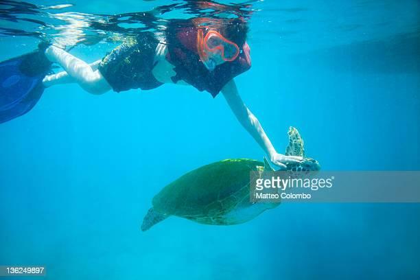 Young boy touching sea turtle