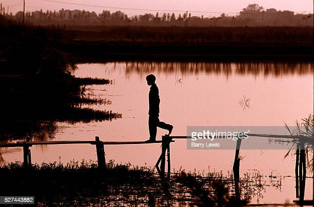 Young boy walks across a narrow footbridge over pools of water in Hanoi Vietnam The pools of water are made from bomb craters from the Vietnam War...