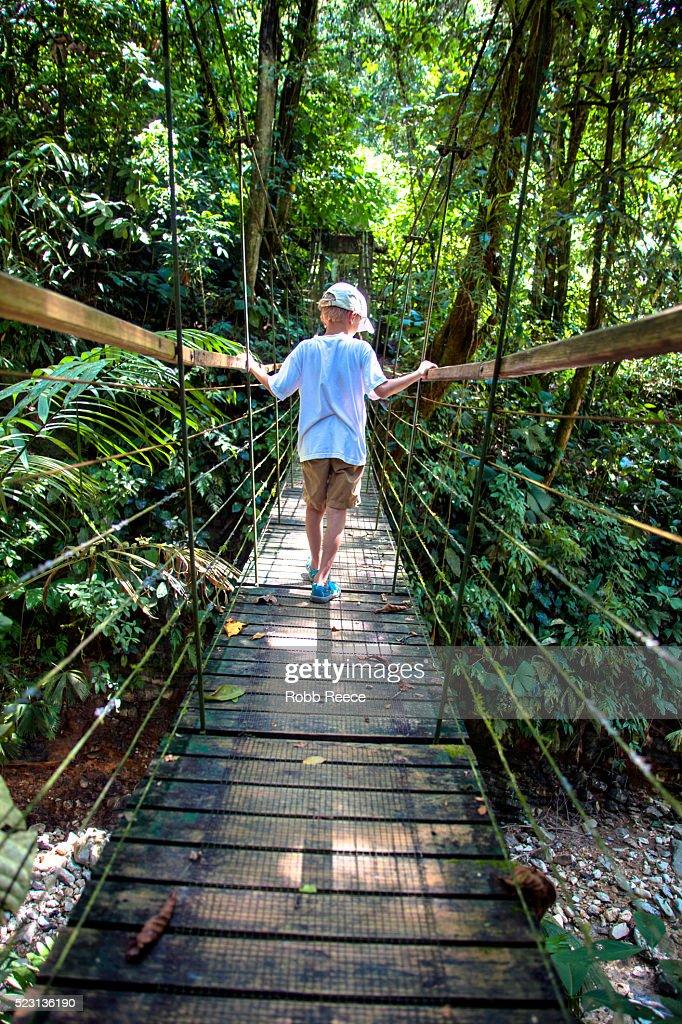 A young boy walks across a narrow, suspension bridge in the jungle of Costa Rica : Stock Photo