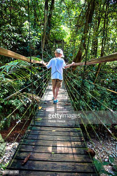 a young boy walks across a narrow, suspension bridge in the jungle of costa rica - robb reece bildbanksfoton och bilder