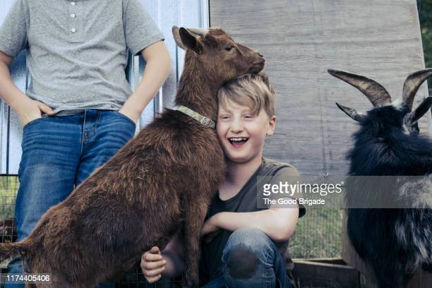 Young boy with goats on farm