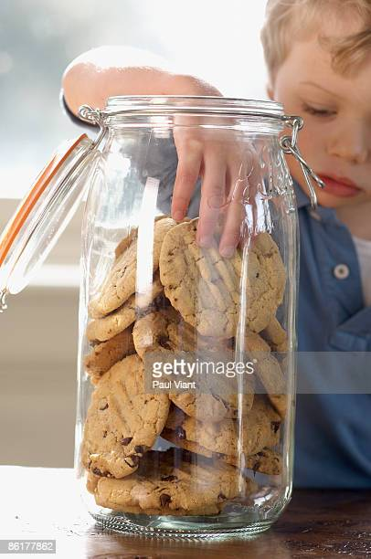 young boy with hand in cookie jar