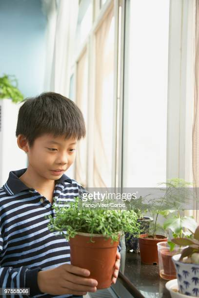 Young boy with plants