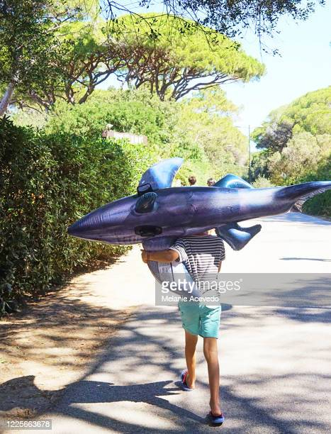 young boy with short brown curly hair and brown eyes holding a blow up dolphin toy walking away from the camera outside cant see his face - blow up doll stock pictures, royalty-free photos & images