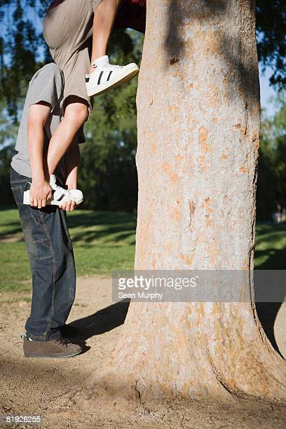 Jungen einen Baum Klettern