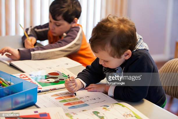 Young Boys Developing Good School Study Habits at Home