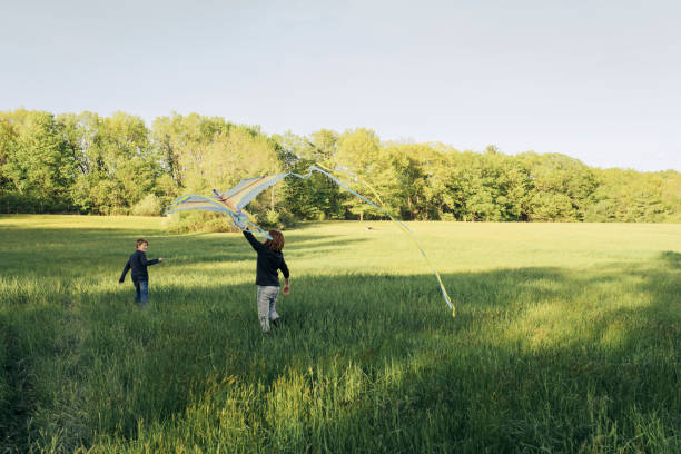 Young boys flying kite in grassy field