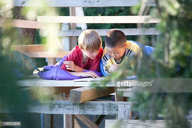 Young boys reading in a tree fort