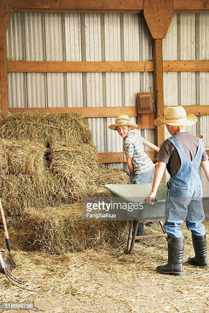 Young boys working in barn