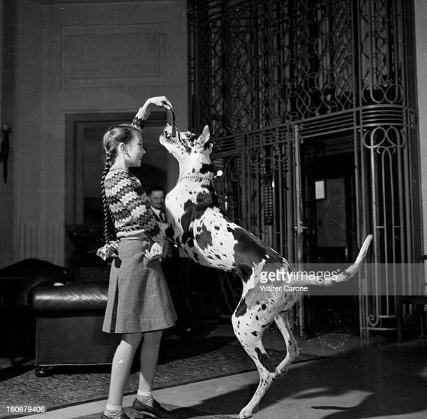 Young British Actress Janette Scott With His Dog Janette SCOTT 11 ans et 145 m une jeune comédienne britannique qui a été choisie entre dix petites...