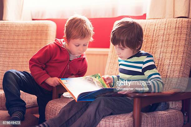 Young brothers reading