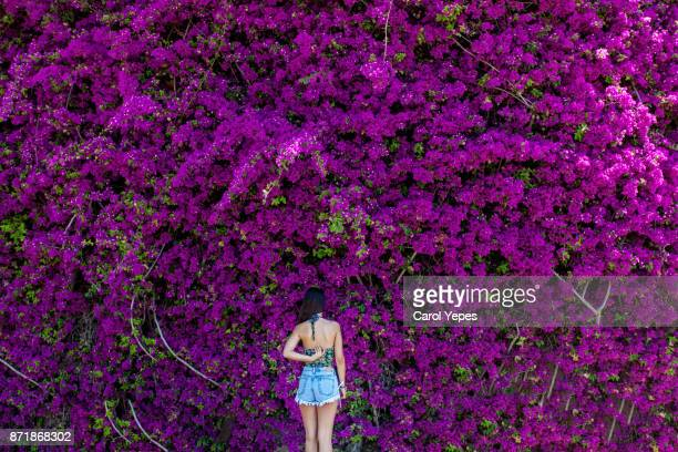 young brunette in casual clothes standing in front of bougainvillea