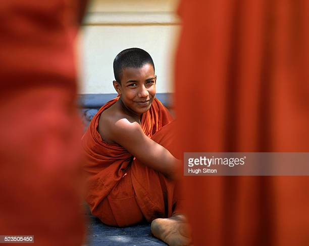 young buddhist monk, sri lanka - hugh sitton stock pictures, royalty-free photos & images