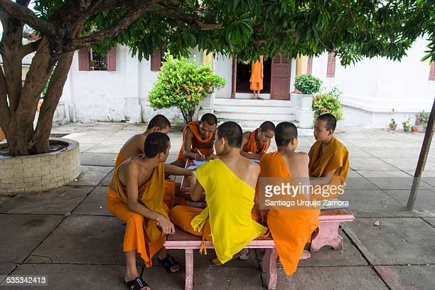 Young Buddhist monks studying around a table under a tree in their monastery, Luang Prabang, Louangphrabang Province, Laos, Asia.