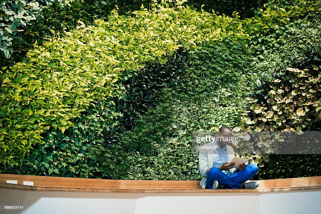 Young businessman using digital tablet in front of green plant wall : Stock Photo