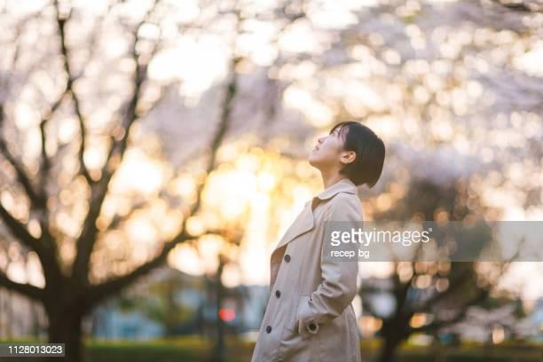 jonge zakenvrouw in openbaar park onder de sakura bomen tijdens zonsondergang - handen in de zakken stockfoto's en -beelden