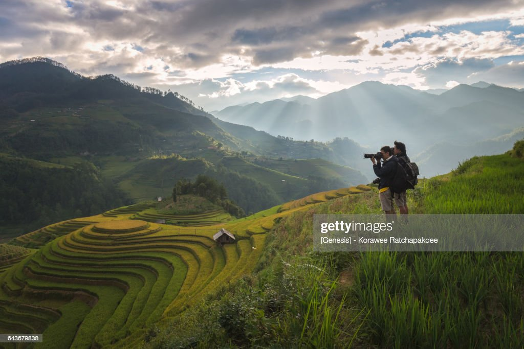 A beautiful scenery at rice field in the sunset time is stun to all traveler to take and snap their own photo in this place