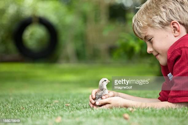 Junge mit Chick