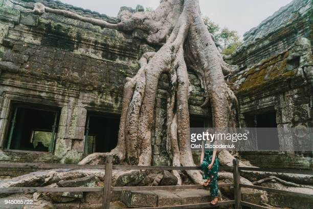 young caucasian woman   in ta prohm temple - angkor stock photos and pictures