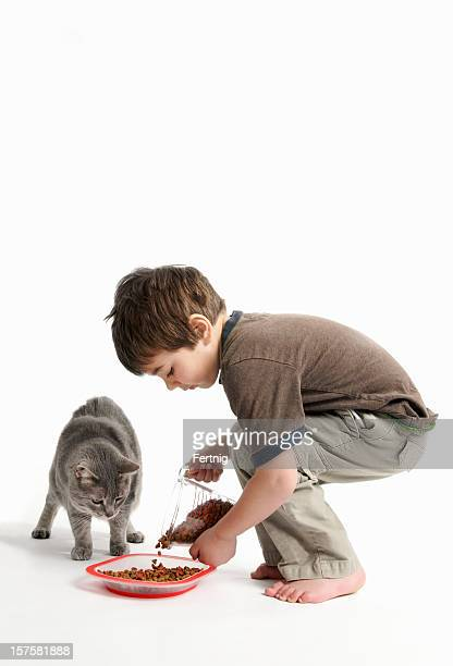 Young child feeding a cat