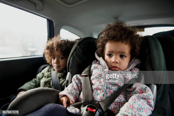 Young Child in A Car Seat