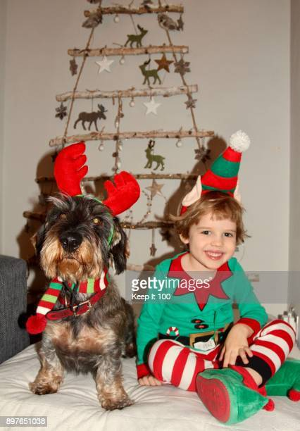 Young child with pet dog at Christmas time