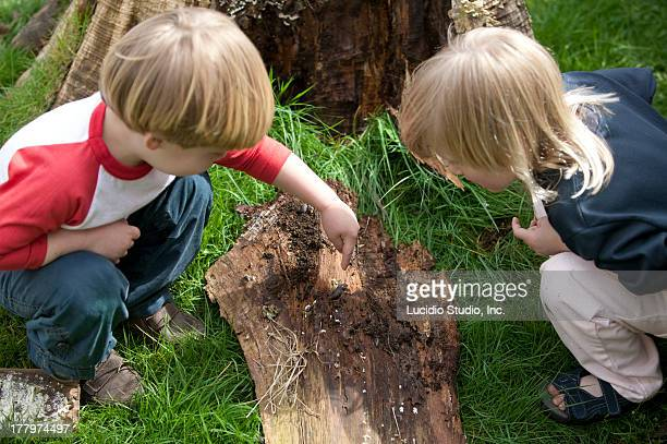 Young children searching for bugs