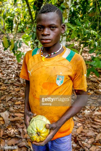Young cocoa plantation worker in Guezon, Ivory Coast.