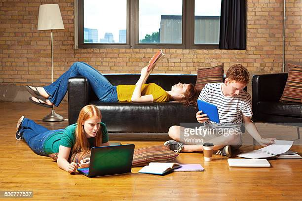 Young College Students Studying Together for Exams