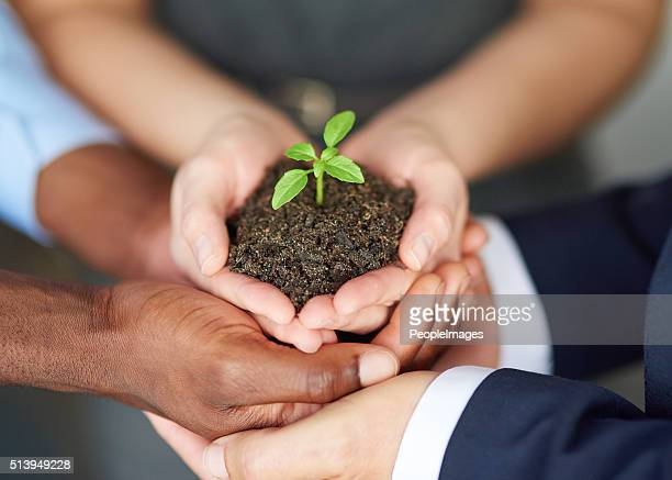 young companies need nurturing - dedication stock pictures, royalty-free photos & images