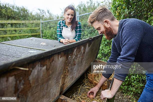Young couple collecting eggs from chicken coop