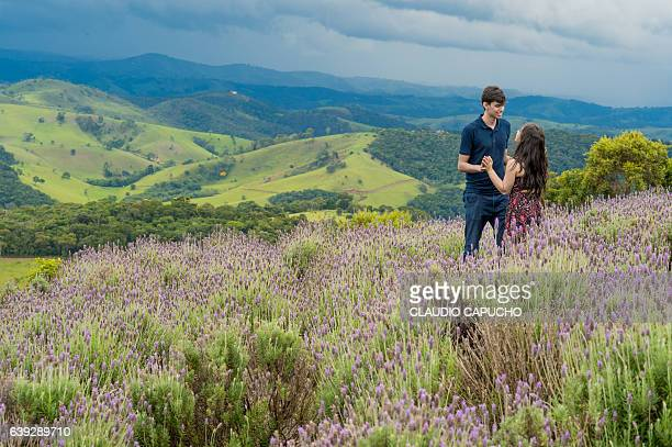 a young couple enjoy the lavender field before the storm - claudio capucho stock photos and pictures